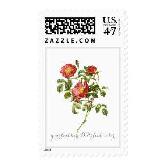 PixDezines Botanical Art/Roses/Gallica Rosa Postage