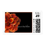 PixDezines burnt orange calla lilies Postage Stamp