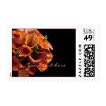 PixDezines burnt orange calla lilies Stamp