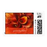 PixDezines Burt Orange Calla Lilies Postage Stamp