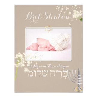 PixDezines dandelions brit shalom diy color Custom Invites