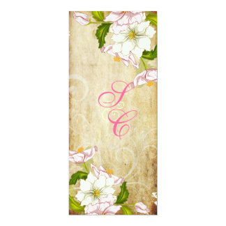PixDezines gardenia+swirls/diy background 4x9.25 Paper Invitation Card