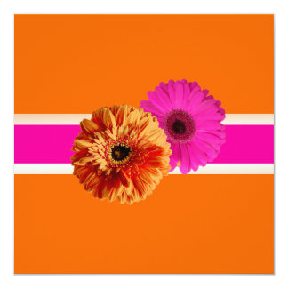 PixDezines Gerbera, orage+passion pink/diy colors Card