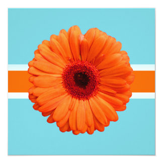 PixDezines Gerbera, orange/diy background colors Card