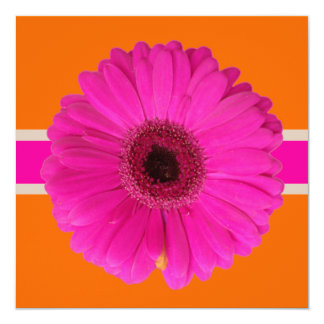 PixDezines Gerbera, pink/diy background/event! Card