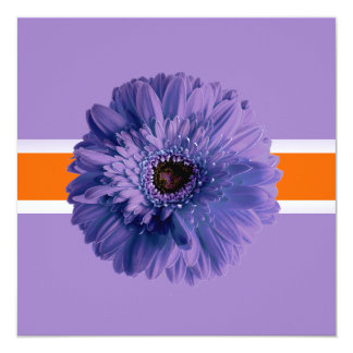 PixDezines Gerbera, purple/diy background colors Card