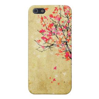 PixDezines Maple Tree Cover For iPhone SE/5/5s