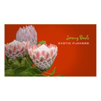 PixDezines maui protea diy background color Business Cards