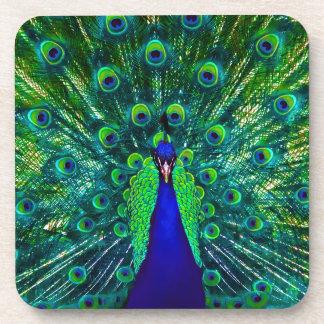 PixDezines neon/psychedelic peacock feather Coaster