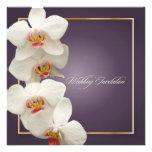 PixDezines orchids/phalaenopsis Announcement