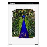 PixDezines peacock+filigree swirls Decals For iPad 2