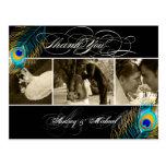 PixDezines Peacock Wedding Photos Thank you Postcard