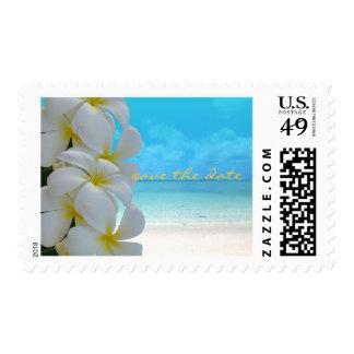 PixDezines Plumeria beach save the date DIY Stamp