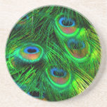 """PixDezines Psychedelic Peacock Drink Coaster<br><div class=""""desc"""">PixDezines psychedelic peacock in many shades of bright and beautiful colors ... see our collection for other psychedelic peacock colors by clicking on a link below. You can choose your own hexachrome colors to add to your background, text, trim, etc. The entire spectrum of the rainbow is at your finger...</div>"""