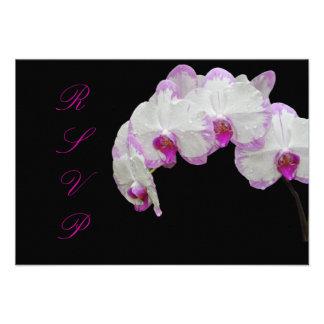 PixDezines rsvp moth orchids/fuschia Custom Announcement