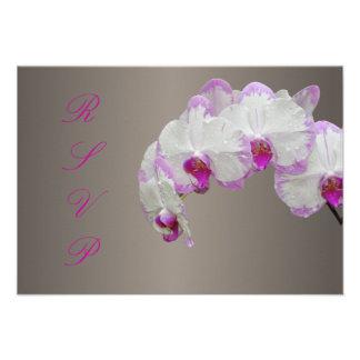 PixDezines rsvp moth orchids/fuschia Custom Invitation