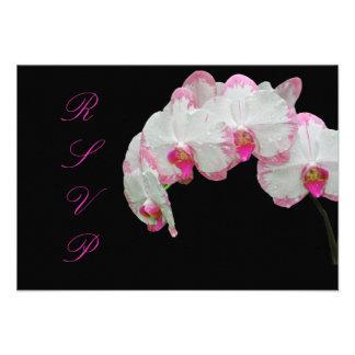PixDezines rsvp moth orchids/pink/diy background Announcements