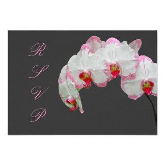 PixDezines rsvp moth orchids/pink Custom Invitations