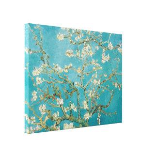 PixDezines van gogh almond blossoms Canvas Print