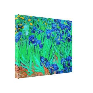 PixDezines van gogh irises/st. remy Canvas Print