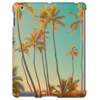 PixDezines vintage hawaiian beach/honaunau
