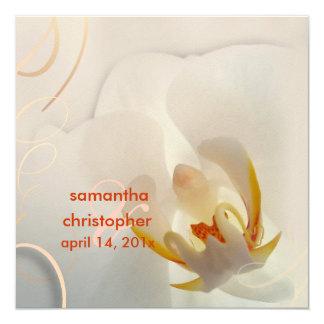PixDezines White Orchid | Pale Pink + White Invitations