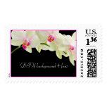 PixDezines white orchids Postage Stamp