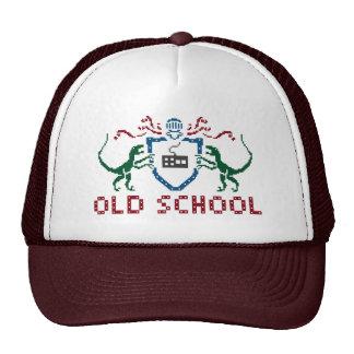 Pixel Old School Dinosaur Hat