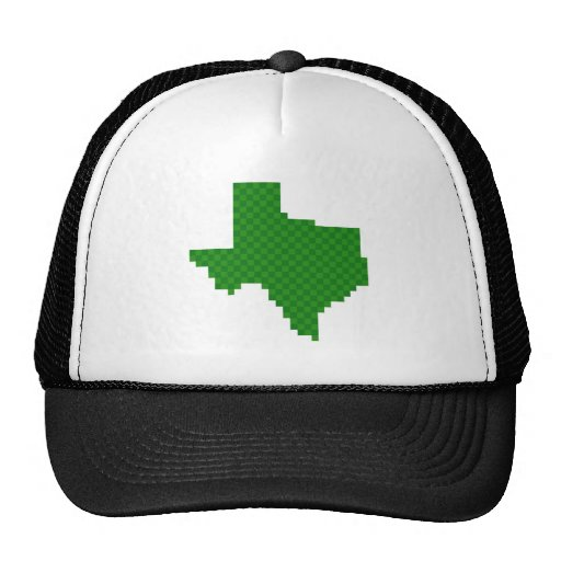 Pixel Texas Trucker Hat