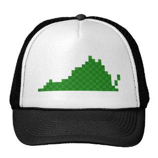Pixel Virginia Trucker Hat