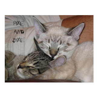 Pixie and Dixie Postcard