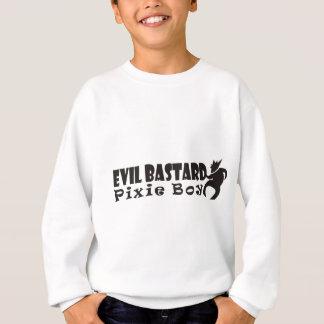 pixie boy 3.JPG Sweatshirt