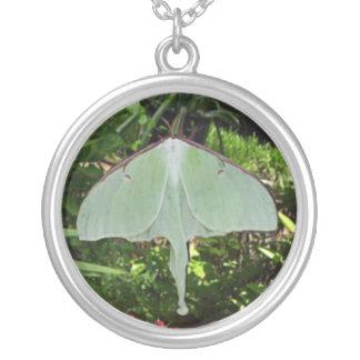 Pixie Globes - Luna Moth Round Pendant Necklace