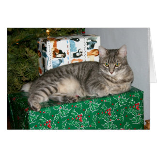 Pixie Kitty guards the presents Card