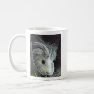 Pixle the guinea pig - mug cuteness incorporated