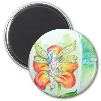 Pixy Confined 2 Inch Round Magnet