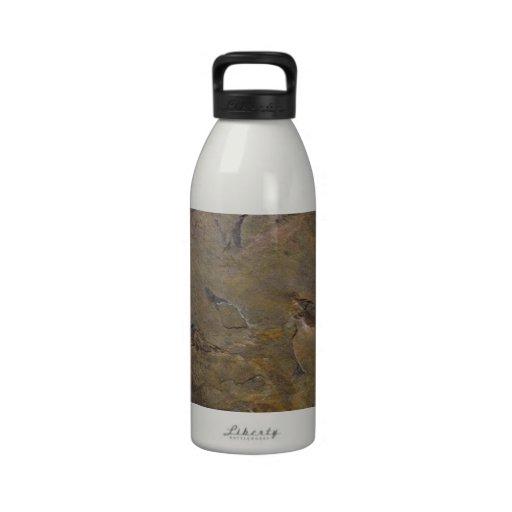 Pizarra Botellas De Agua Reutilizables