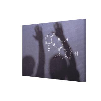 Pizarra de la ecuación con las sombras de impresión en lienzo
