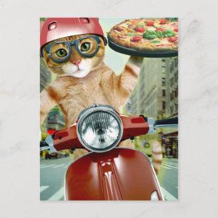 Pizza cat - cat delivery postcard