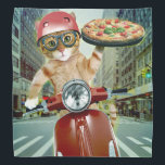 "pizza cat - cat - pizza delivery bandana<br><div class=""desc"">pizza , pet , kittens , &quot;tabby cat &quot;, &quot;cute cats&quot; , &quot;funny cats&quot;, &quot;cat pizza&quot; , &quot;cat delivery &quot;, &quot;delivery cat&quot; , delivery , </div>"