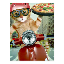 pizza cat - cat - pizza delivery postcard