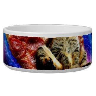pizza cat - crazy cat - cats in space bowl