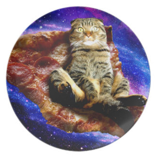 pizza cat - crazy cat - cats in space dinner plate