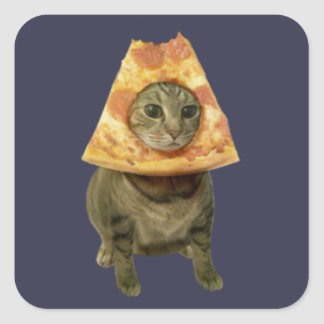 Pizza Cat Design Square Sticker