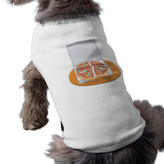 pizza in delivery box pet clothes