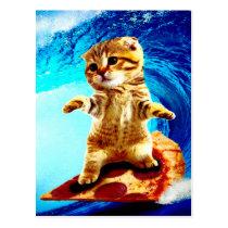 Pizza Surfing Cat - surf cat - surfcat Postcard