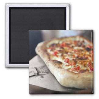 Pizza with tomatoes, garlic and meat substitute fridge magnet