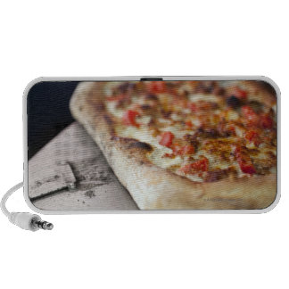 Pizza with tomatoes, garlic and meat substitute travelling speakers