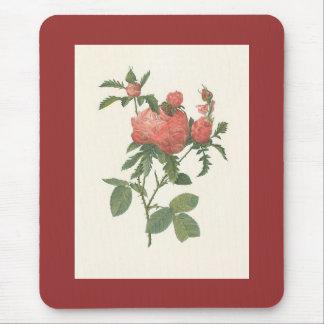 PJ Redoute - Rosa centifolia prolifera foliacea Mouse Pad