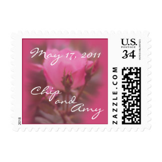 Pk Knockout Postcard Stamp- customize